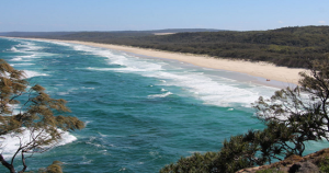 look point straddie 2