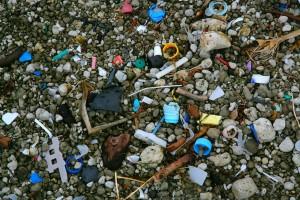 plastic on beach straddie 02